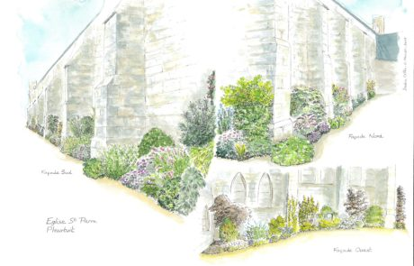 Illustration végétaux église de Pleurtuit -35-